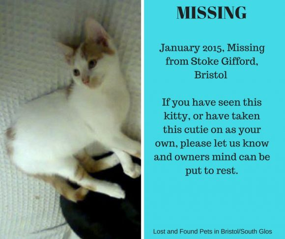 Missing – January 2015, Stoke Gifford, Bristol
