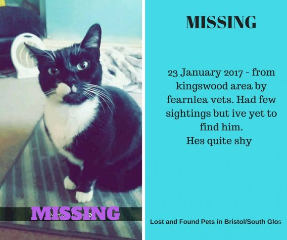 MISSING – 23rd January 2017 – Kingswood, nr Fernlea Vets