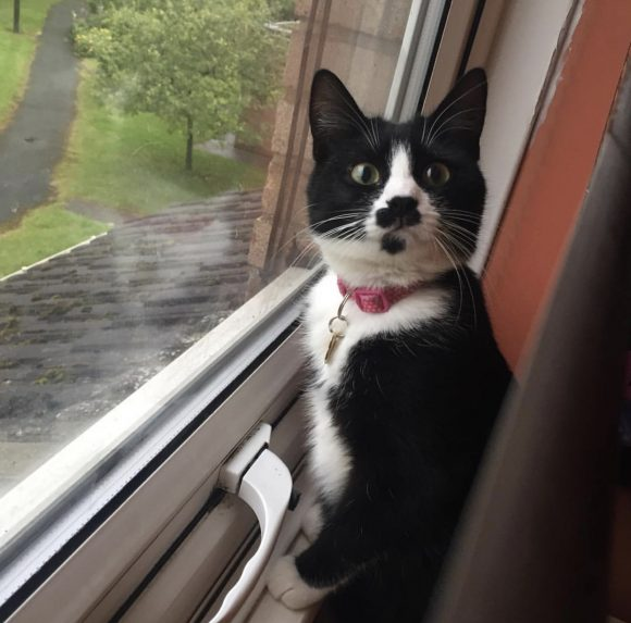 Betty Soo missing in Bristol, BS16