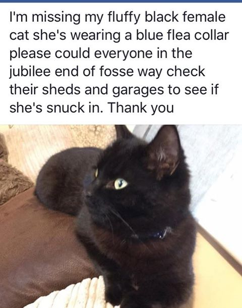 Missing since 27 May Clevedon